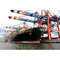 6823 Containerumschlag MSC ROMA - Terminal EUROGATE Hamburg |